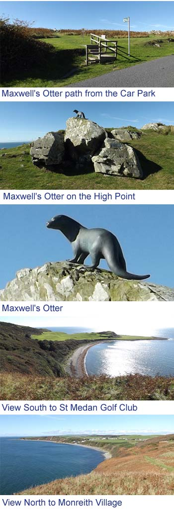 Maxwells Otter Images